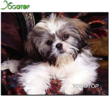 Load image into Gallery viewer, 5d diy diamond painting animal shih tzu