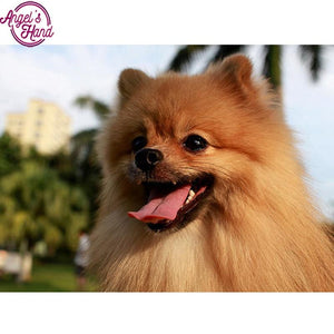 5d Diamond Painting Pomeranian dog
