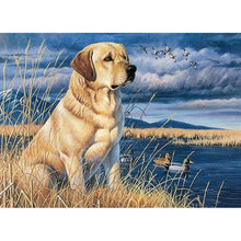 Load image into Gallery viewer, Diamond painting Dog Labrador