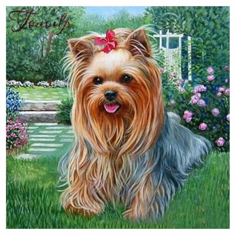 Diamond Painting Dog Yorkshire Terrier