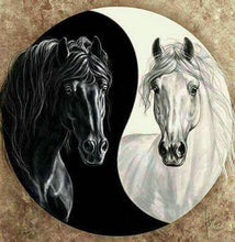 Load image into Gallery viewer, diamond painting black horse white horse Tai Chi