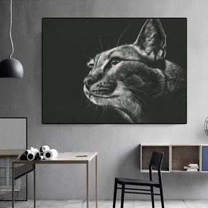 Diamond Painting Cat Black and White