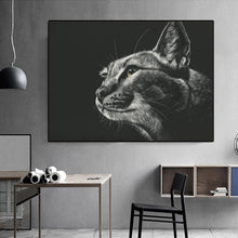 Load image into Gallery viewer, Diamond Painting Cat Black and White