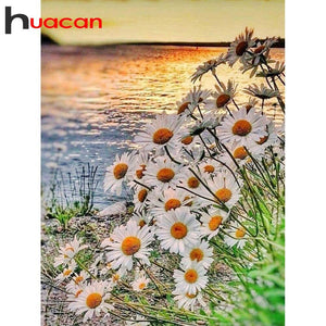 diamond painting Daisy flowers sea