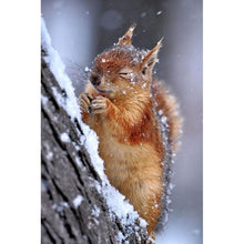 Load image into Gallery viewer, Diamond painting chipmunk in wood snow