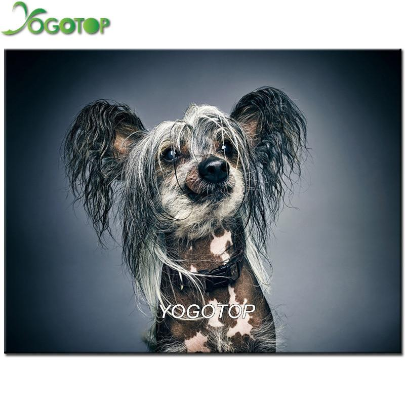 diamond painting Chinese Crested Dog grey