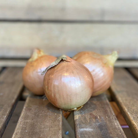 Onions per kilo (red/golden)