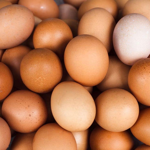 Organic and Free Range Fresh eggs (half dozen)