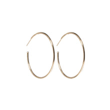 Load image into Gallery viewer, Evolve Hoop Charm Earrings - Diamond