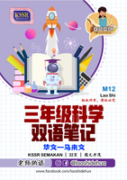 💥Softcopy💥M12 [三年级科学] 双语笔记 | [Year 3 Science] Bilingual Note