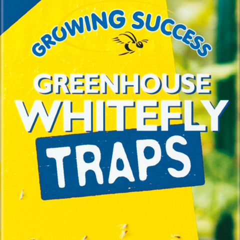 Greenhouse Whitefly Traps