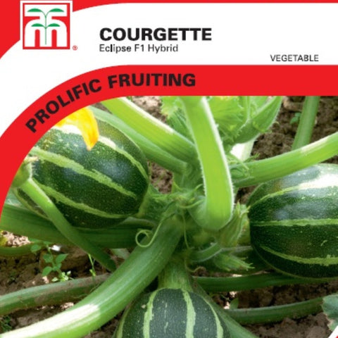 Courgette Eclipse F1 hybrid
