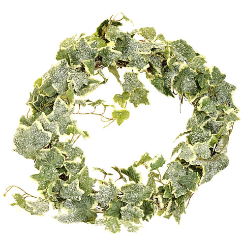 Frosted ivy wreath