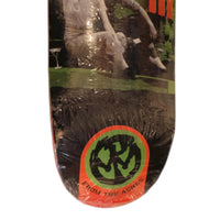 Pennywise Deck From The Ashes Album Model