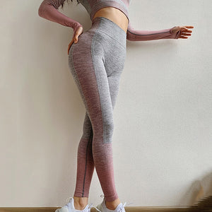 Seamless Women Yoga Set Long Sleeve Top High