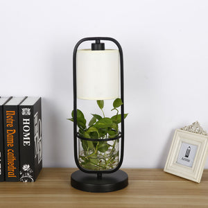 Augustus - Frame Planter LED Desk Lamp