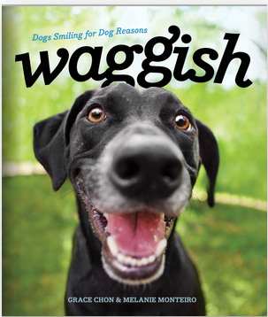 Norton - Waggish