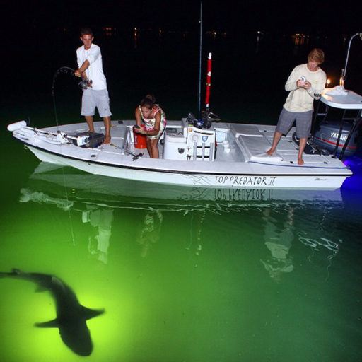 AquaPro™ Underwater Fishing Light
