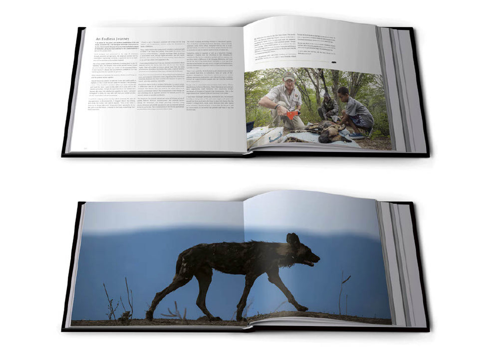 Nick Dyer - SPECIAL EXHIBITION PRICE! Painted Wolves Book