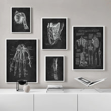 Load image into Gallery viewer, High Definition Human Anatomy Canvas Wall Art Prints Medical Education Decor