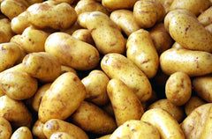 5lb Bag of Russet Potatoes
