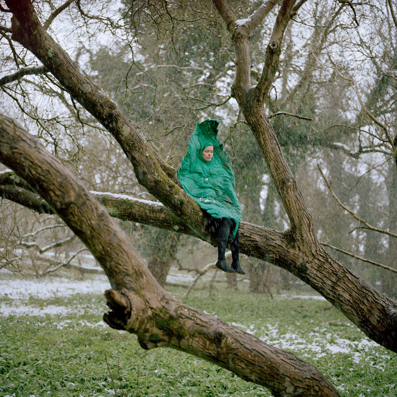 "Riitta Ikonen + Anja S, ""Leaf from the Series Bird and Leaf"""