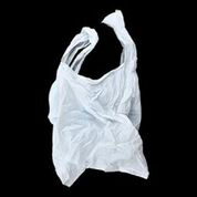 "Lisa Kirk, ""Bag Piece"""