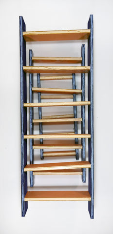 "Eliot Greenwald, ""Shelf Drawing (Purple Salmon)"""