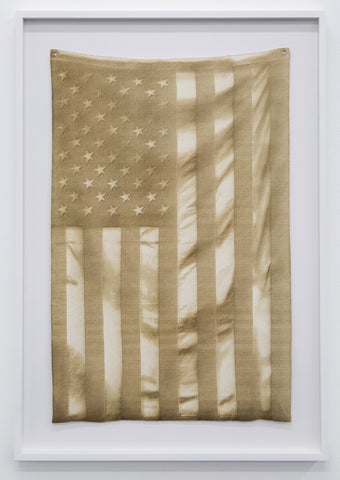 "Joe Nanashe, ""Burnt Flag"""