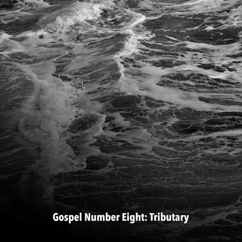 "Mary Edwards, ""Gospel Number Eight: Tributary"""