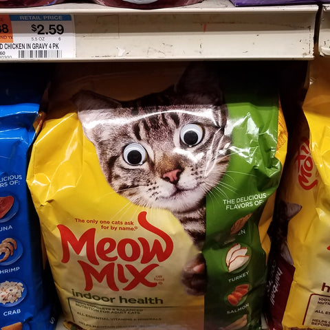 "Wellington Fan, ""Meow Mix"""