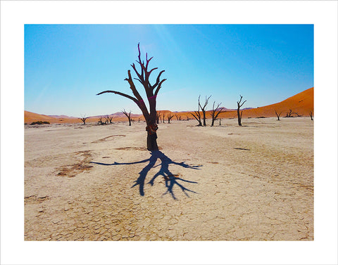 "Lino Meoli, ""Drought in Namibia"""