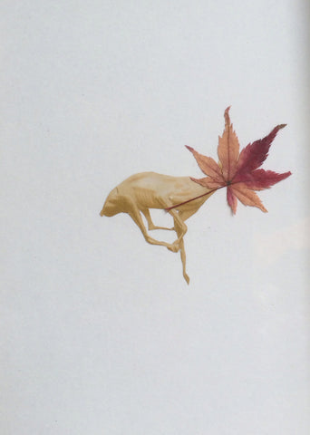 "Misako Inaoka, ""Maple Deer"" SOLD"