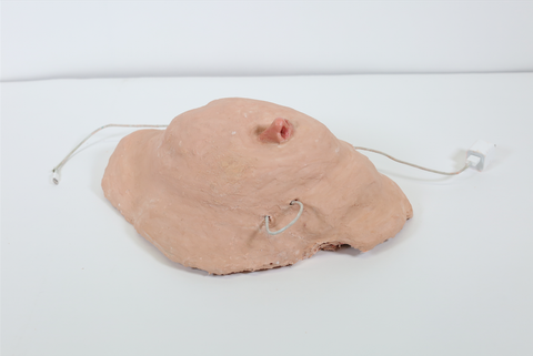 "Laura Tiffin, ""Flaccid Amid Nose and Paste"""