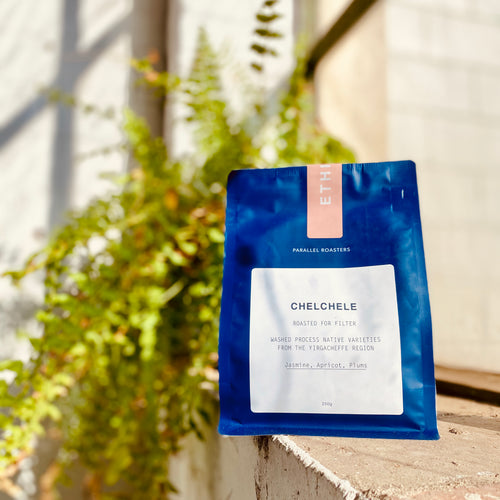 Chelchele_Parallel_Coffee_Roasters_campgrounds_coffee_camp_grounds_tamworth