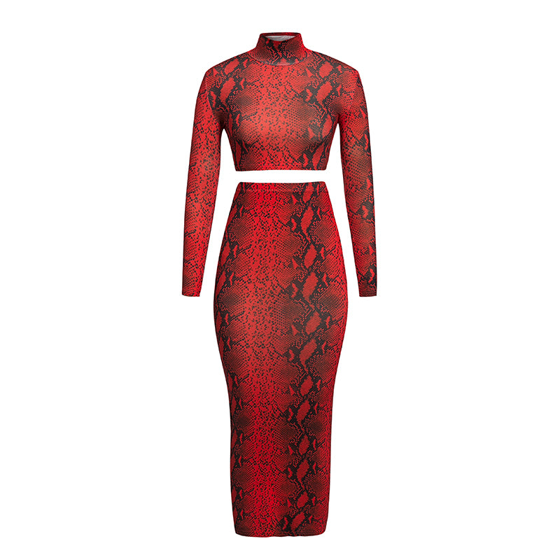 Glamaker Animal print two piece suit long dress Women turtleneck long sleeve high waist bodycon dress Autumn winter sexy dress