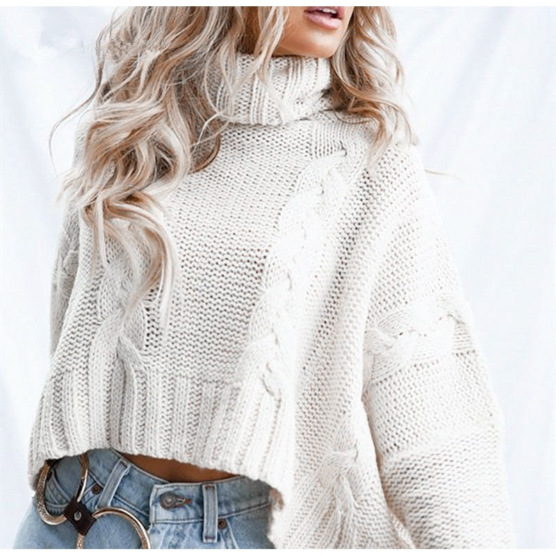 Knitted turtleneck sweater autumn winter Batwing long sleeve female short sweater Ladies loose pullover jumpers