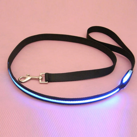 Glow In Dark LED Safety Nylon Light Up Dog Leash