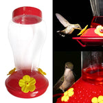 Wide Mouth Hanging Hummingbird Feeder