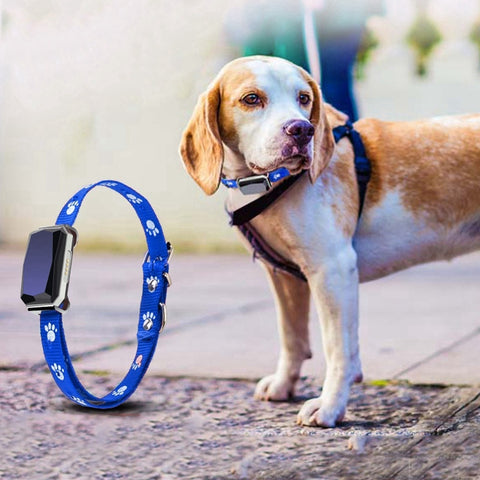 GPS Pet Tracking Collar With Mic