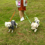 Dual Retractable Walking Leash