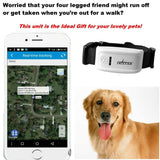 Real Time Pet Global Locator GPS Tracker Collar