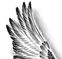 2 x realistic sexy wing tattoo design high resolution download