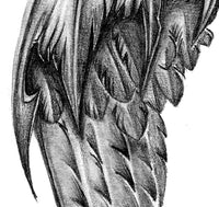 Realistic sexy wing  tattoo design high resolution download
