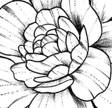 Linework peony sexy tattoo design high resolution download