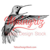 Realistic colibri  design download high resolution download