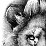 Realistic lion tattoo design high resolution download