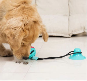 The Chewy Ball - Toy For Teeth Cleaning
