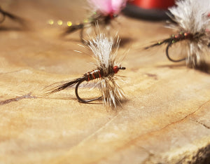 fly from high country outfitters flyfishing shop