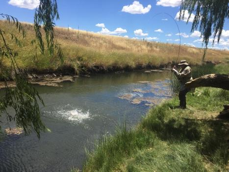 man flyfishing from the bank